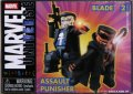 Assault Punisher & Blade